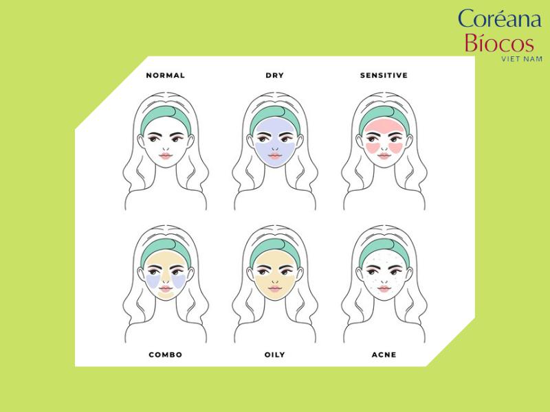 da bạn thuộc trường phái da nào?