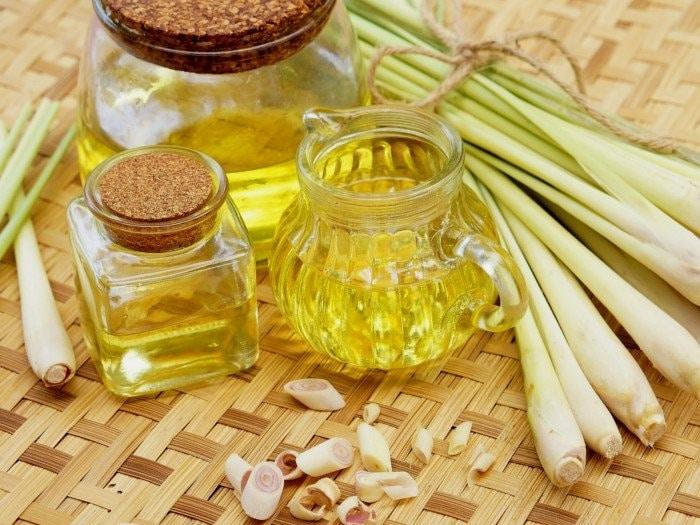 Tinh dầu sả nguyên chất có nhiều tác dụng tốt cho cơ thể của chúng ta