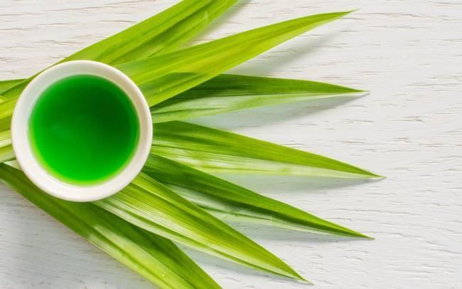Tinh dầu lá dứa dùng để massage giúp giảm căng thẳng