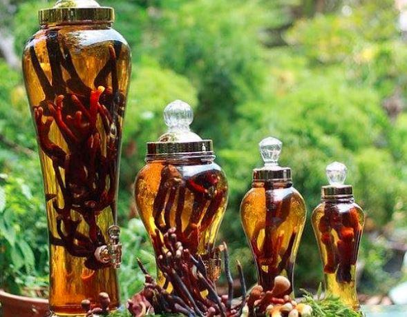 Bài thuốc ngâm rượu chữa yếu sinh lý bằng nhung hươu