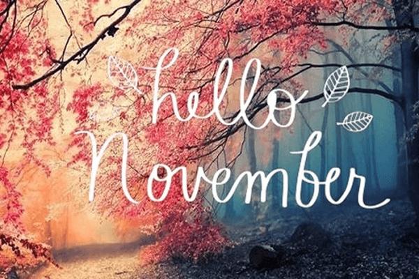 Người sinh tháng 11 là cung gì?