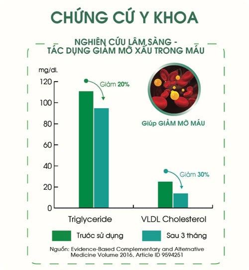 Nghiên cứu lâm sàng về tác dụng giảm mỡ xấu trong máu của tinh dầu thông đỏ