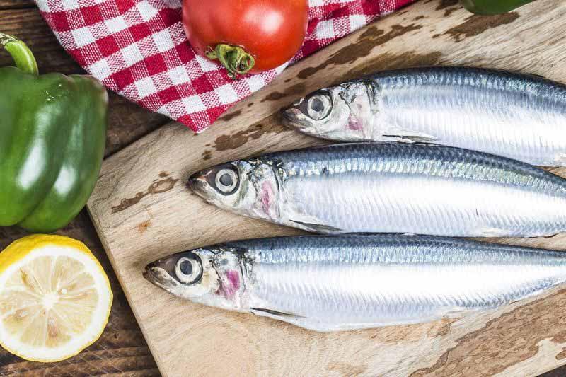 Cá mòi cũng là nguồn cung cấp Canxi rất dồi dào.
